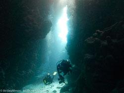 BD-090408-Fury-Shoal-4083023-Homo-sapiens.-Linnaeus.-1758-[Diver].jpg